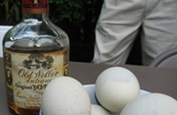 Don't stare at the chick: aggressive balut push on the way