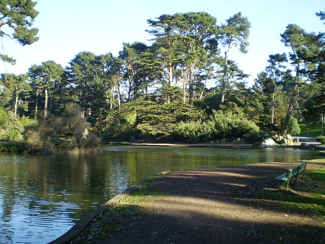 Golden Gate Park, site of said pot-smoking bacchanal.