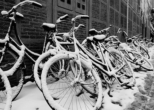 512px-Flickr_-_NewsPhoto__-_Amsterdam__city_of_bikes.jpg