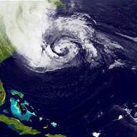 Did you read about Hurricane Sandy, drone strikes, and rap-game SEO manipulation tactics?