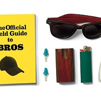Lollapalooza Survival Guide