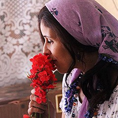 Our guide to the 2015 Chicago Palestine Film Festival