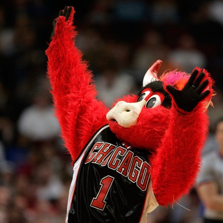 [photograph of Benny the Bull]