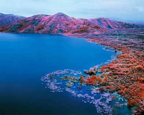 Richard Mosse, Beaucoups of Blues, North Kivu, Eastern Congo, November 2012