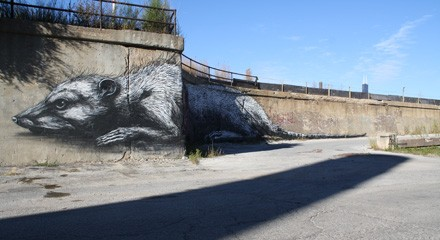 ROA's possum mural on 16th Street between Laflin and Ashland