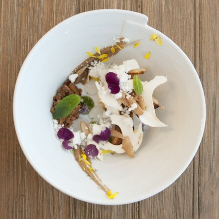 Salad of grilled mushrooms, young pine shoot gel, and acorn puree