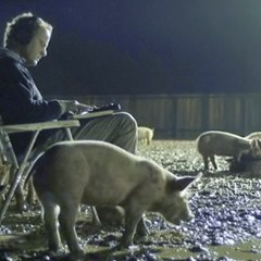 Shane Carruth's Upstream Color screened at the Patio this past spring.