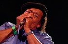 The 27th Annual Chicago Blues Festival