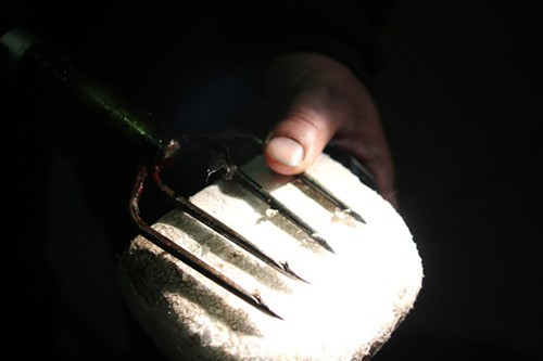 The business end of a frog gigger