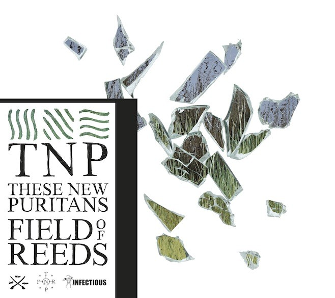 The cover of Field of Reeds