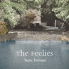 The Feelies bring back their comforting sound