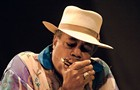 The <i>Reader</i>'s Guide to the Chicago Blues Festival