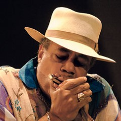 The Reader's Guide to the Chicago Blues Festival