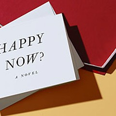 The terrific novel you missed: Are you Happy Now?
