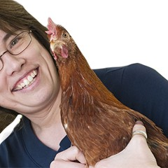 This week's Chicagoan: Jennifer Murtoff, chicken consultant