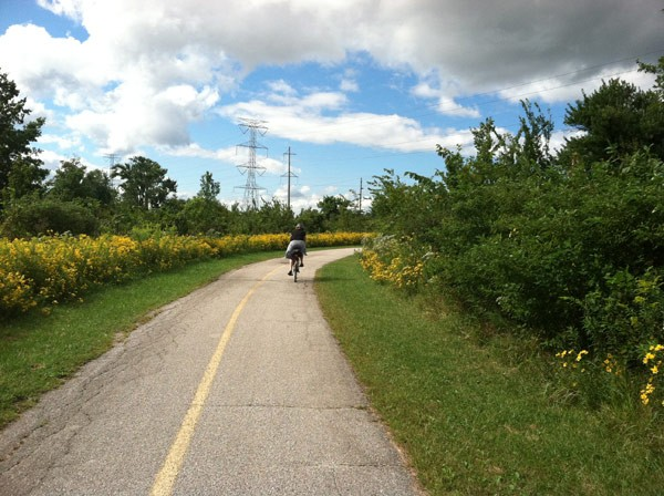 Trucking through Brownwell Woods, between Three Floyds and Flossmoor Station