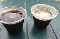 Revelry and other favorite beers from the Two Brothers Summer Festival