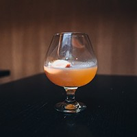 A D.O.C. Wine Bar bartender takes the sting out of royal jelly