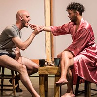 <i>Desire in a Tinier House</i> is a poetic queer love story—despite the shirtless-boy marketing