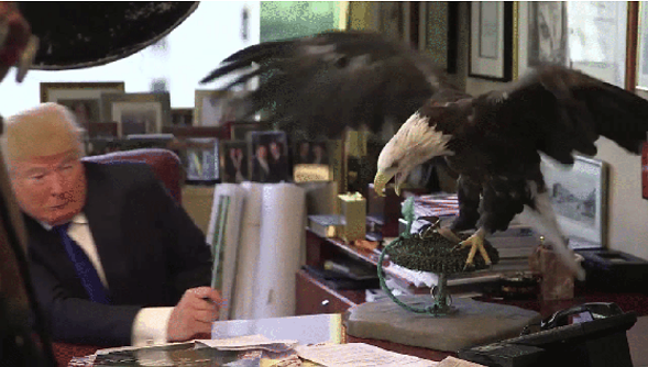 Donald Trump meets Uncle Sam the eagle. - TIME