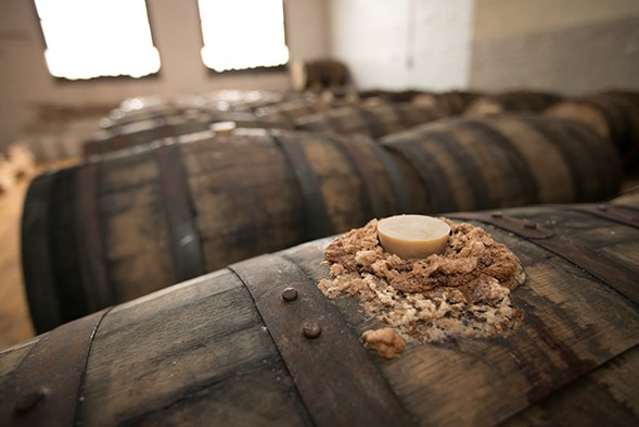 The aging lambic-style beer is so lively that it sometimes bubbles out the top. - COURTESY DOVETAIL BREWERY