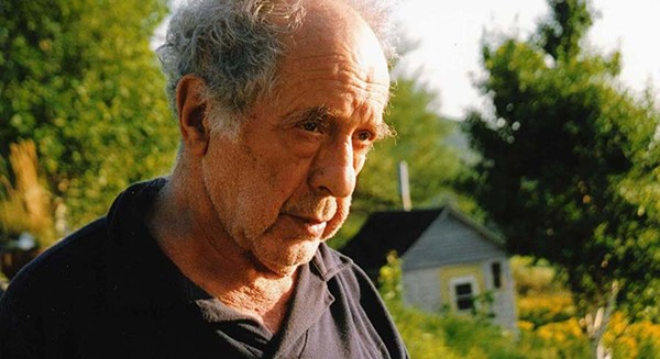 Leaving Home, Coming Home, a blurry portrait of photographer Robert Frank, finally hits theaters