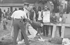 The untold school segregation story behind Bernie Sanders's 1963 arrest