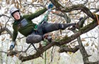 Illinois's champion tree climber is also an arborist