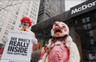 Not-so-happy meals: animal rights group takes on McDonald's in Chicago streets