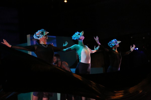 "Golondrinas (""swallows"") in Feathers: A Tango Journey"