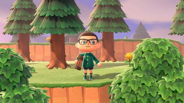 The author in Animal Crossing action.