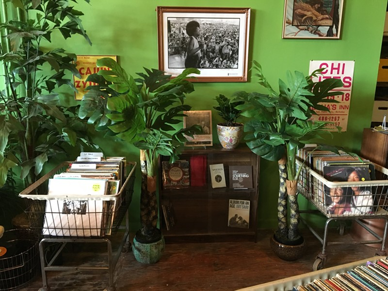 Records, plants, photos, flyers, and paintings, all in one convenient location - LEOR GALIL