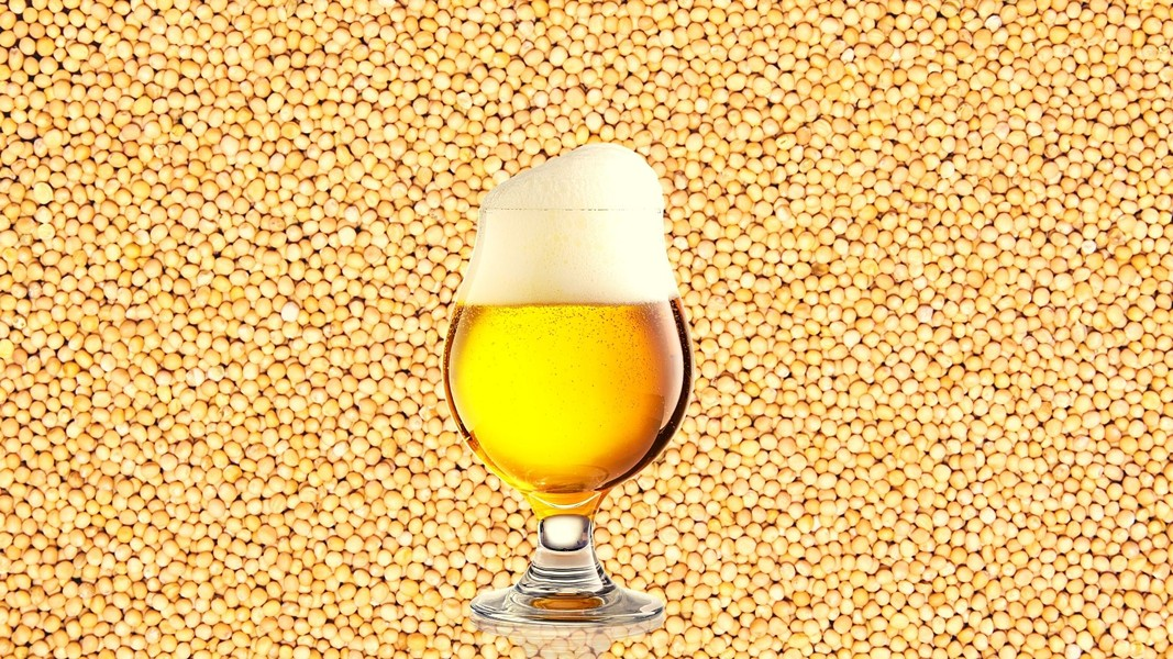 Mustard seeds in beer? It's happening. - MICHELLE BRUTON