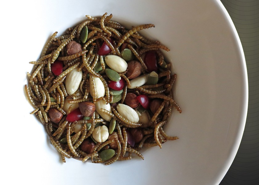 Breakfast cereal with mealworms featured on page 28 of Comestible 7-Day Meal Plan: Food as Text - COURTESY PAT BADANI