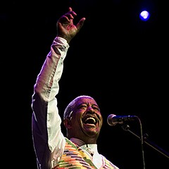 The best of the best at the 2015 WorldMusic Festival