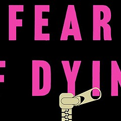 In Fear of Dying, Erica Jong explores sex and death in the age of Internet dating