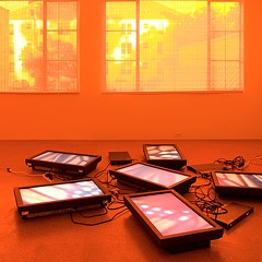 At the MCA, Diana Thater transports visitors to new spaces