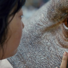 Okja is a big-screen fantasy you won't see on the big screen