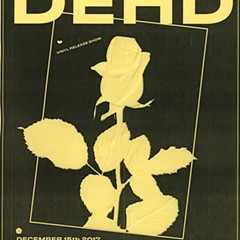 Dehd flowers on the gig poster of the week