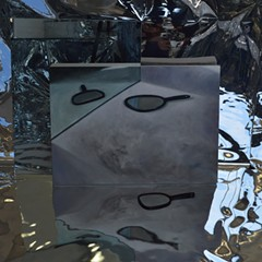 Is the work in Gwendolyn Zabicki's new exhibition a painting or a mirror? Only scuffs and scratches will tell.