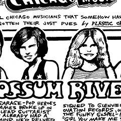 Countrified rockers Possum River emerged from the breakup of the Cryan' Shames