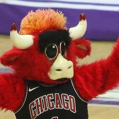 Benny, the Bulls fan