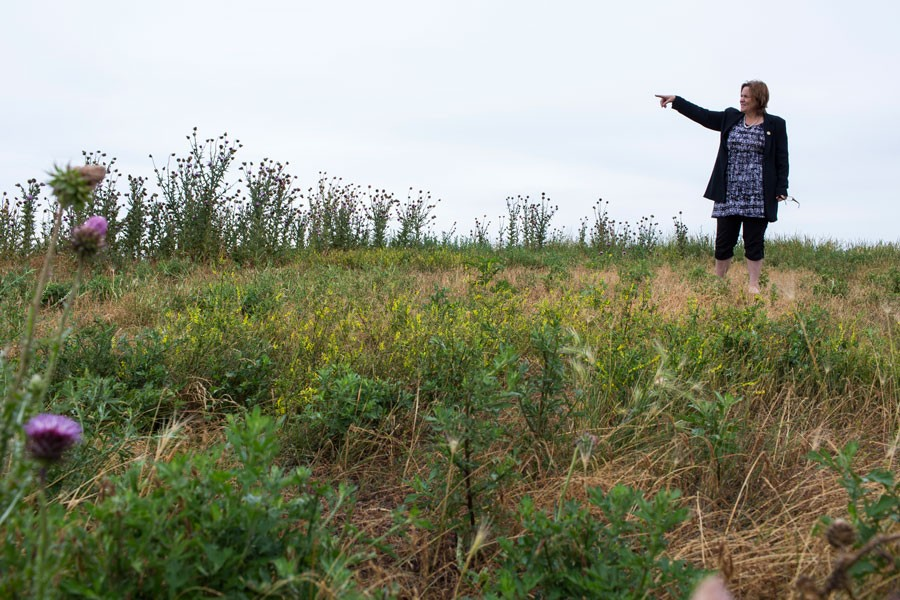 Garza stands on a hilltop at Big Marsh, a former industrial waste dumping site slated to open as a bike park in the fall of 2016. - MICHELLE KANAAR