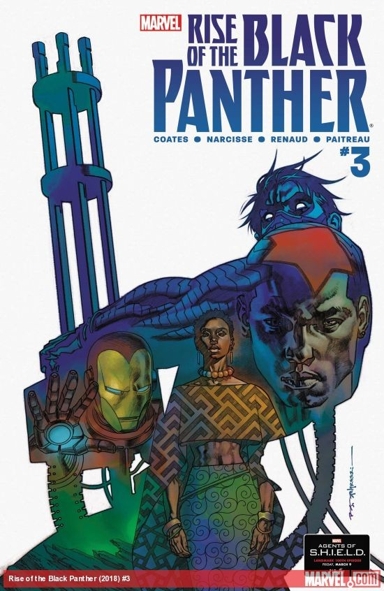 Rise of the Black Panther #3, with cover art by Brian Stelfreeze