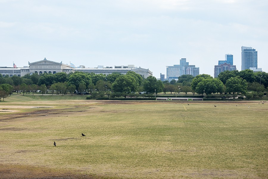 August 13, 2019: The south lawn of Grant Park, just north of the museum campus, is empty on a recent Tuesday. - KATHLEEN HINKEL
