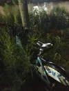 A Divvy bike abandoned in the bushes in Ping Tom Bike.