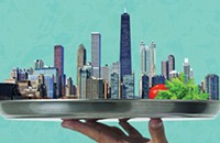 <i>The Chicago Food Encyclopedia</i> is an historical treat