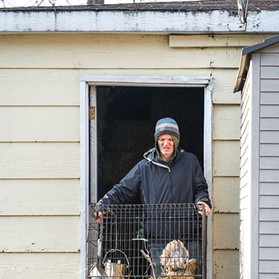 The goats (and chickens) of GlennArt Farm