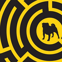 Welcome to the Cook County animal maze