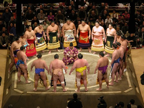 Where have all the sumo gone?